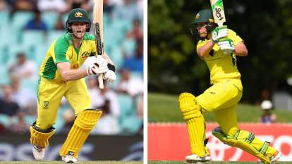 Dismissed: 'Batsman' out, 'batter' in as MCC approves gender-neutral terms