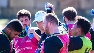 Matt Gibbon (centre, pink jersey) cools off at Wallabies camp in Brisbane this week.