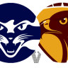 As it happened: Hawthorn Hawks, Geelong Cats fire up for Easter Monday at MCG