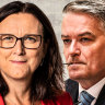 'Economy and ecology': Cormann's top OECD rival pledges climate reform