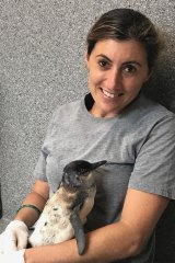 Sea Life Sunshine Coast mammals manager Carla Haskell nurses Ash the little penguin.