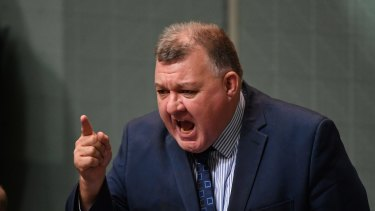 Saved by Scott Morrison's intervention ... Liberal MP Craig Kelly.