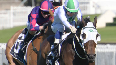Going well:  He Ekscels oustayed some promising types at Rosehill recently and backs up in the Grafton Cup.