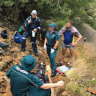 Bushwalker winched from south-east Queensland mountain after falling 10 metres