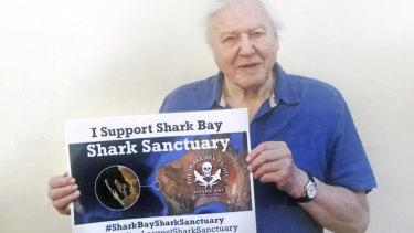 Sir David Attenborough has thrown his weight behind protecting sharks in Shark Bay's marine park.