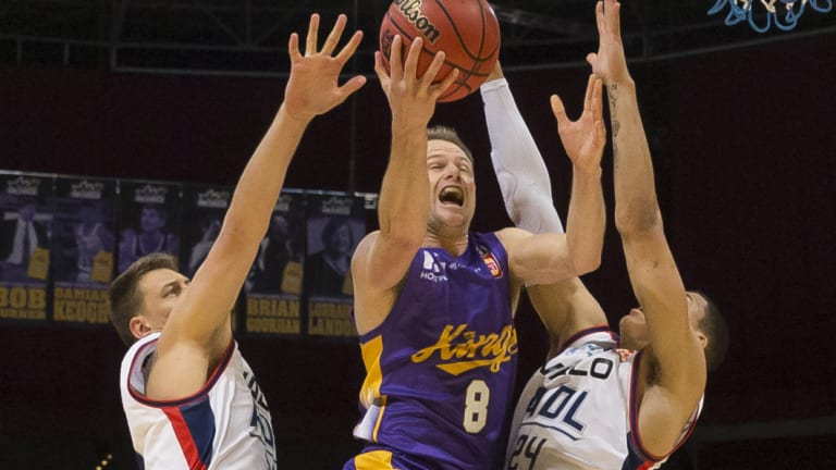 Inside the key: Brad Newley of the Kings shoots during a rearguard action against the 36ers at Qudos Bank Arena.