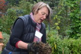 Buxton directly credits her compost for the quality of her soil.