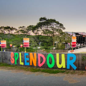 1000 revellers at Splendour in the Grass have chlamydia