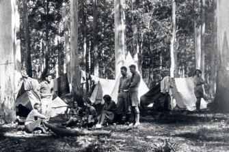 Walkers in the Blue Gum Forest in the Blue Mountains in 1931 when its conservation became a concern.