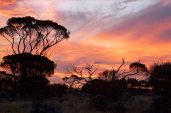 A sunset in Tjuntjuntjara, one of WA's most remote communities, more than six hours' drive from Kalgoorlie.