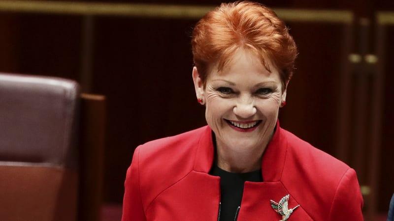 When Pauline Hanson backs your tax code, alarm bells should ring