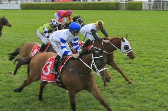 Kolding holds on to win last year's George Main Stakes third-up from a spell