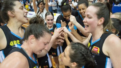 WNBL axe referee, but Capitals focus on rebirth of Canberra dynasty