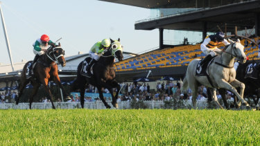 Lion-hearted effort: Kathy O'Hara  looks to the inside after passing the post on Grey Lion, right.