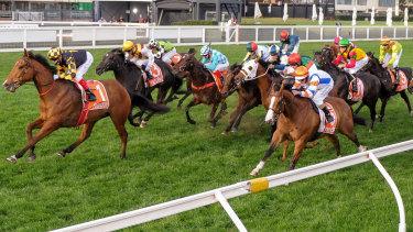 Dollar For Dollar (orange cap on the rails) runs second to Behemoth in the Sir Rupert Clarke Stakes.