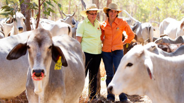 Moira Lanzarin and her mother, Clair O'Brien, surrounded by Brahman cattle on their Coodardie property.