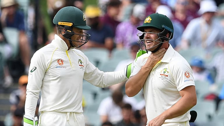 At their throats: Australian captain Tim Paine checks on Aaron Finch after he was hit in the throat.