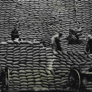 Before containers, wharf labourers such as these men in Sydney in 1954 did the back-breaking work of unloading sacks.