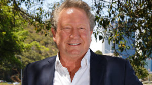 Fortescue Metals Group chairman and founder Andrew Forrest.