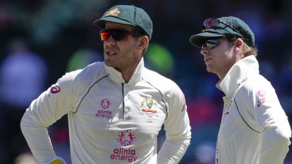 Cultural review chief says Paine must keep cool in Gabba cauldron