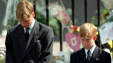 The princes said their mother's death was like an 'earthquake'.