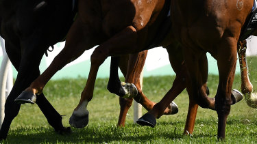 Lismore hosts a seven-race card on Monday.