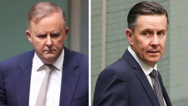 Federal Labor leader Anthony Albanese is set to demote MP Mark Butler.