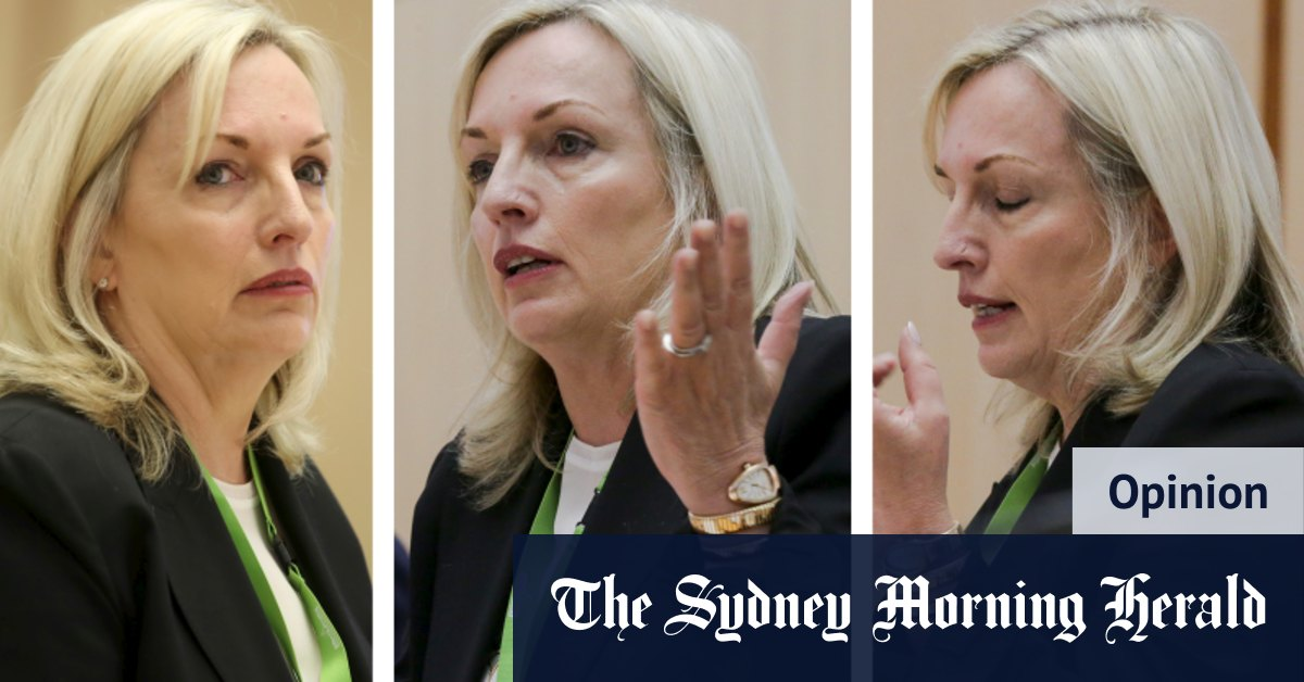 Christine Holgate controversy stirs difficult memories – Sydney Morning Herald