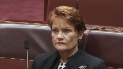 Pauline Hanson shareholding went under the radar for six months