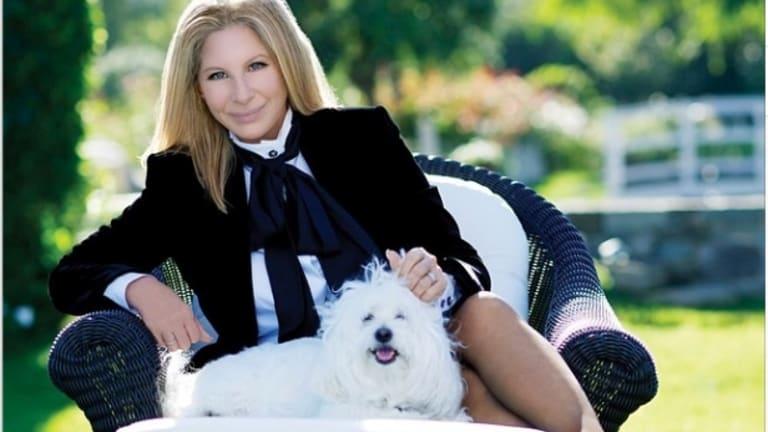 Barbra Streisand on Instagram with her dog Samantha.