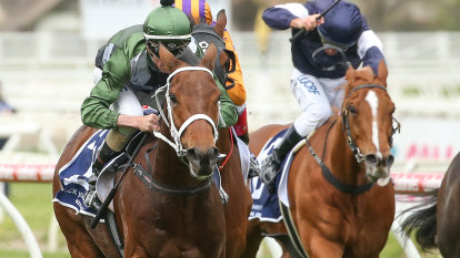 Cup ambitions on line as Waller chooses the Bart Cummings over Metrop