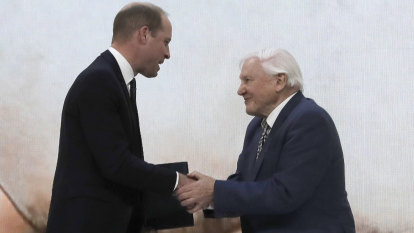 'It's quite nice to be able to turn the tables for once': Prince William interviews Sir David Attenborough at Davos