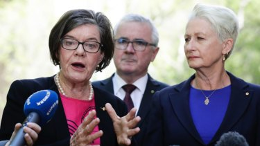 Dr Kerryn Phelps joins crossbench MPs Cathy McGowan and Andrew Wilkie  at Parliament House in October.