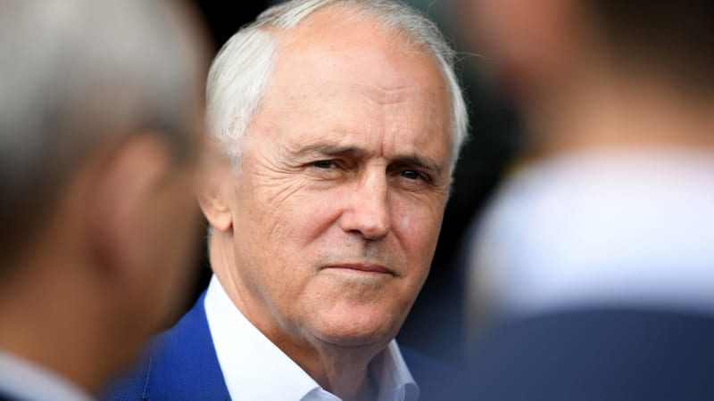 'He doesn't have a political bone in his body': Dutton's spray at Turnbull