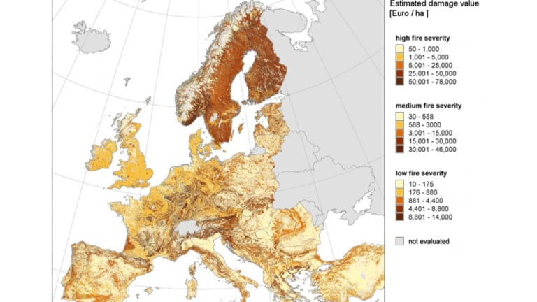 Predicted wildfire damage value in Europe under three different scenarios.