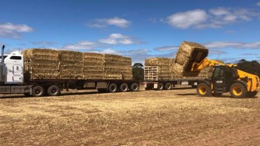 Up to 50 road trains are heading to north-west Queensland with fodder to help struggling farmers. Most are coming from South Australia and have been organised by Rural Aid.