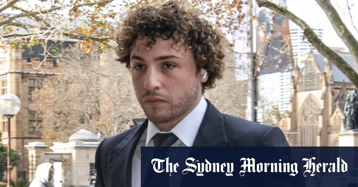 Ibrahim's son should get 'substantial' damages in defamation case court told – Sydney Morning Herald