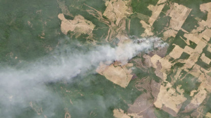 Amazon deforestation in Brazil triples, pointing to more fires to come