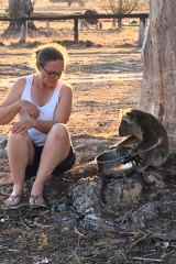 Farmer Libby Swan with one of the koalas that come for water at her north-western NSW farm.