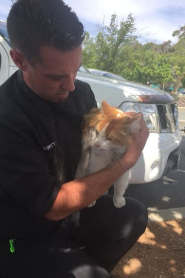 The very lucky moggie with one of its rescuers from Westfield Woden security