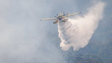 Air operations in action at Queensland's Beechmont Tarome fires earlier this month.