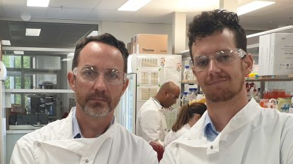 UQ vaccine safe, effective, and can be mass produced, researchers say