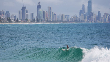 Irukandji jellyfish could spell doom for the Gold Coast's tourism industy, a James Cook University scientist has warned.