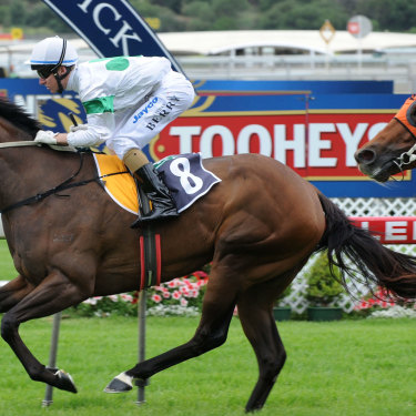 Unordered (in orange) running second at Royal Randwick in 2008.