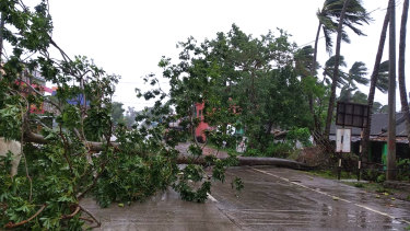 Trees lie uprooted on a highway from heavy winds ahead of Cyclone Amphan landfall in Orissa, India.