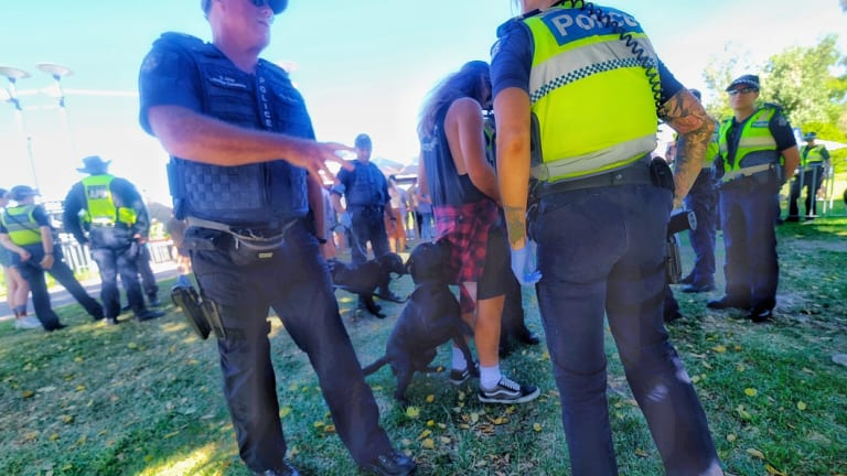 Sniffer dogs were brought to the festival by police.
