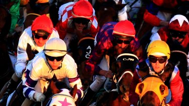 There are plenty of options for punters on an eight-race card at Narrandera on Sunday.