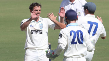 Return: Steve O'Keefe and Peter Nevill will bolster a Blues side in their upcoming Sheffield Shield final against Victoria.