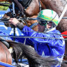 O'Shea has dual attack looking for second Inter Dominion champion