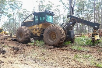 Logging machinery in the Styx River State Forest. The area was heavily burnt and ecologists fear for the remaining Hastings River mouse and other endangered species now that logging is resuming in what remains of unburnt.